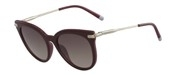 Compre ou amplie a imagem do modelo Calvin Klein CK3206S-609.