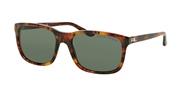 Compre ou amplie a imagem do modelo Ralph Lauren 0RL8142-501771.